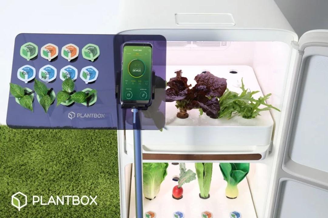 完全放置で野菜が育つ。冷蔵庫のような箱型のスマート家庭菜園
