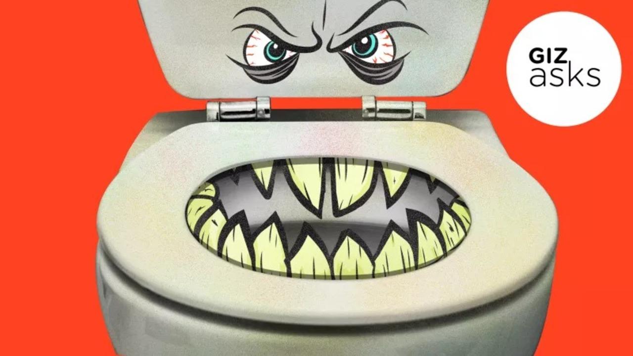 トイレの便座から病気がうつることってあるの?