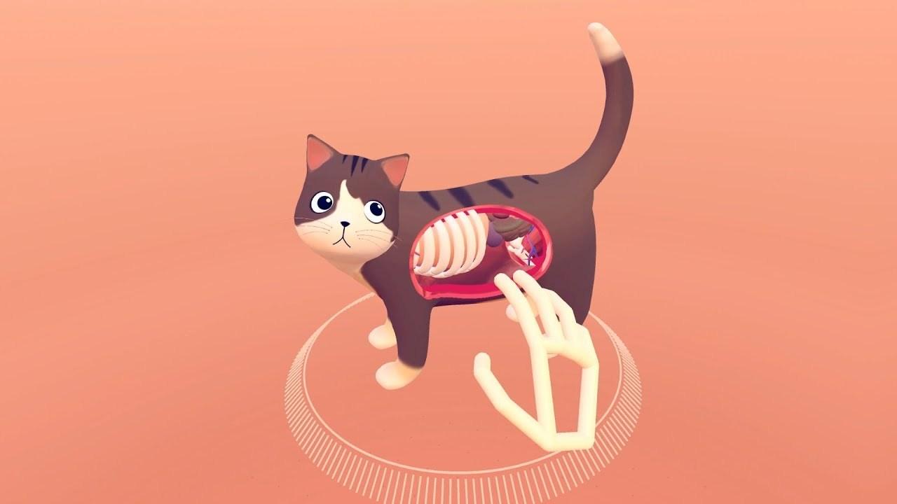 ネコの体内を透視できるVR解剖学アプリ「Cat Explorer」