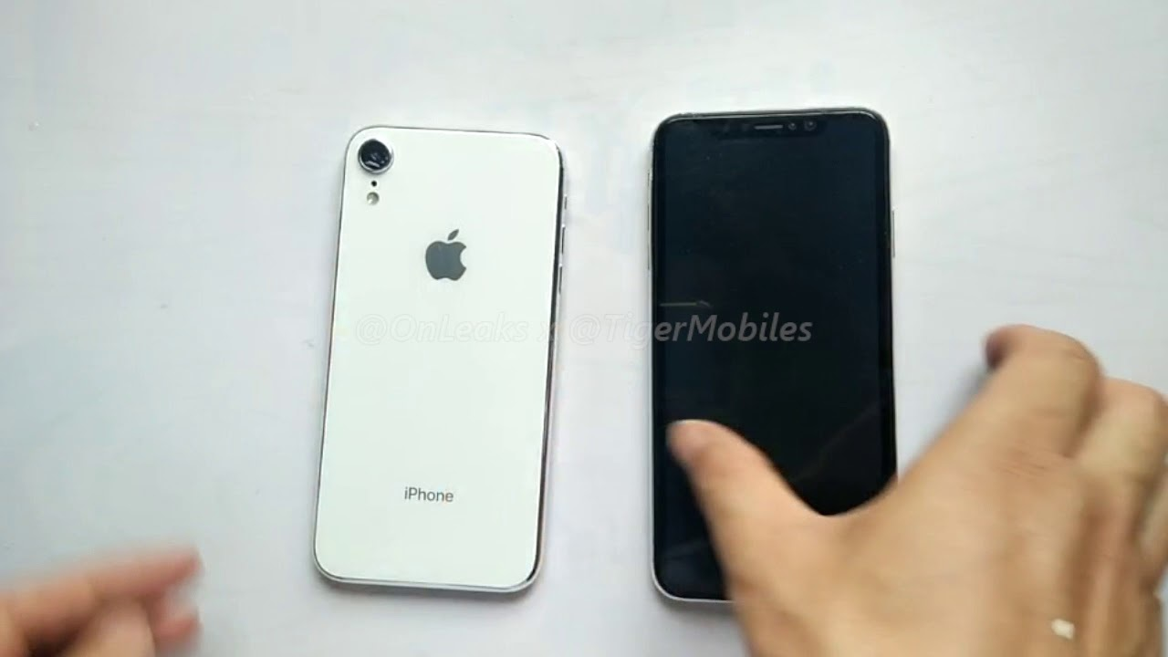 6.1/6.5インチの新型iPhone(であろう)ダミー動画を見てみよう