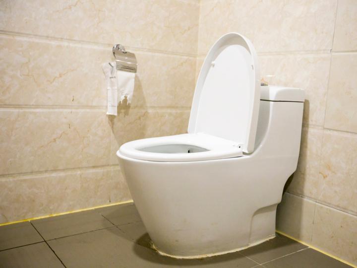 20180808_toilet