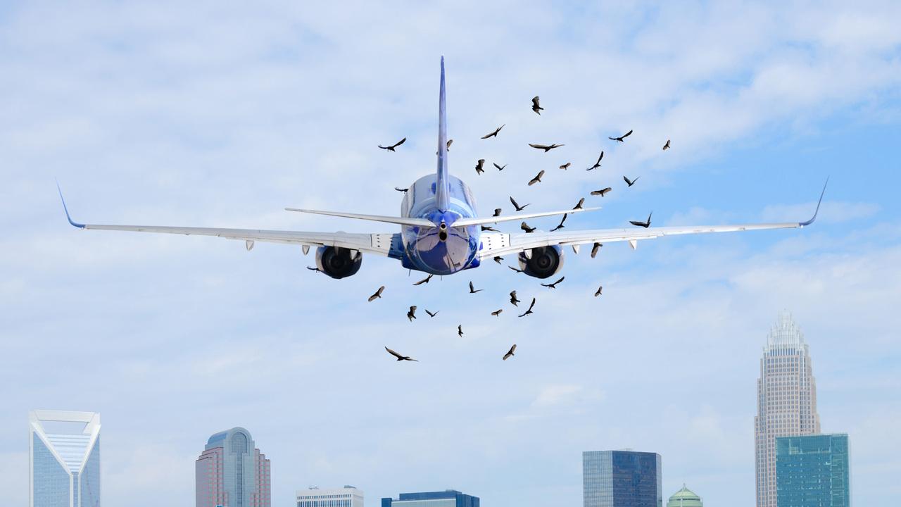 飛行機をバードストライクから護る完全自律型のドローンを研究中