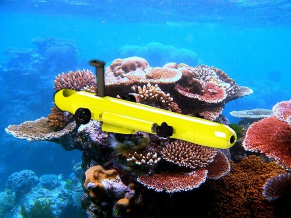 サンゴ礁荒らしのヒトデを駆逐するロボットが超優秀