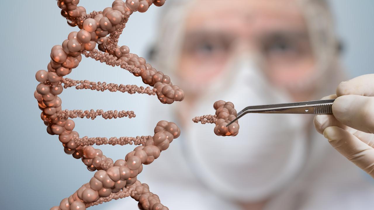 人間の受精卵を使った遺伝子編集、日本でもはじまるかも