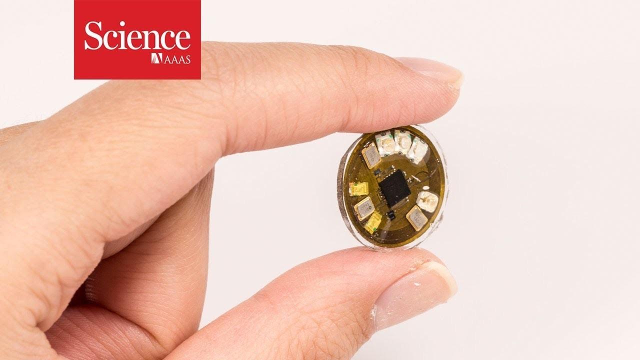 爪にも服にも貼れる。紫外線の量を検知する小型ウェアラブル・ボタンが開発中