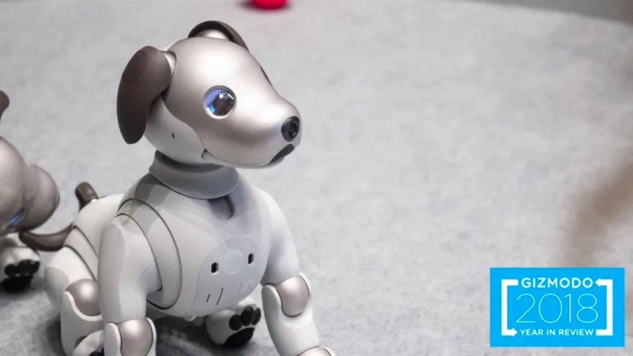 なぜか普及しない。2018年の「家庭用ロボット」を振り返る