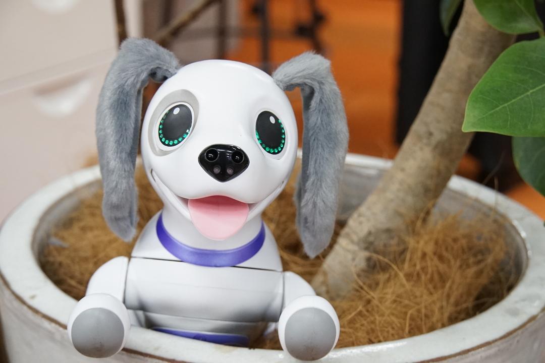 「お手」も「おすわり」も「おへんじ」も。言葉を理解するロボットペット「ハロー! ズーマー」をお迎えしてみない?