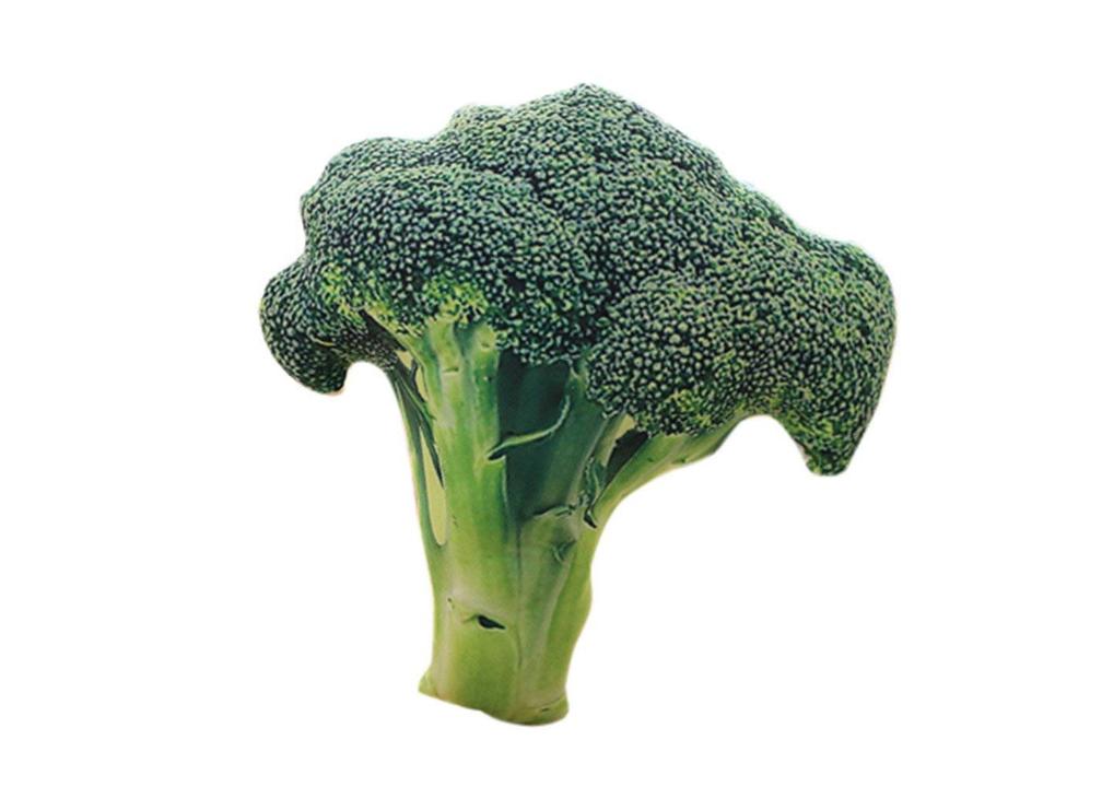 野菜不足だし、ブロッコリーでも摂ろうかな。クッションだけど