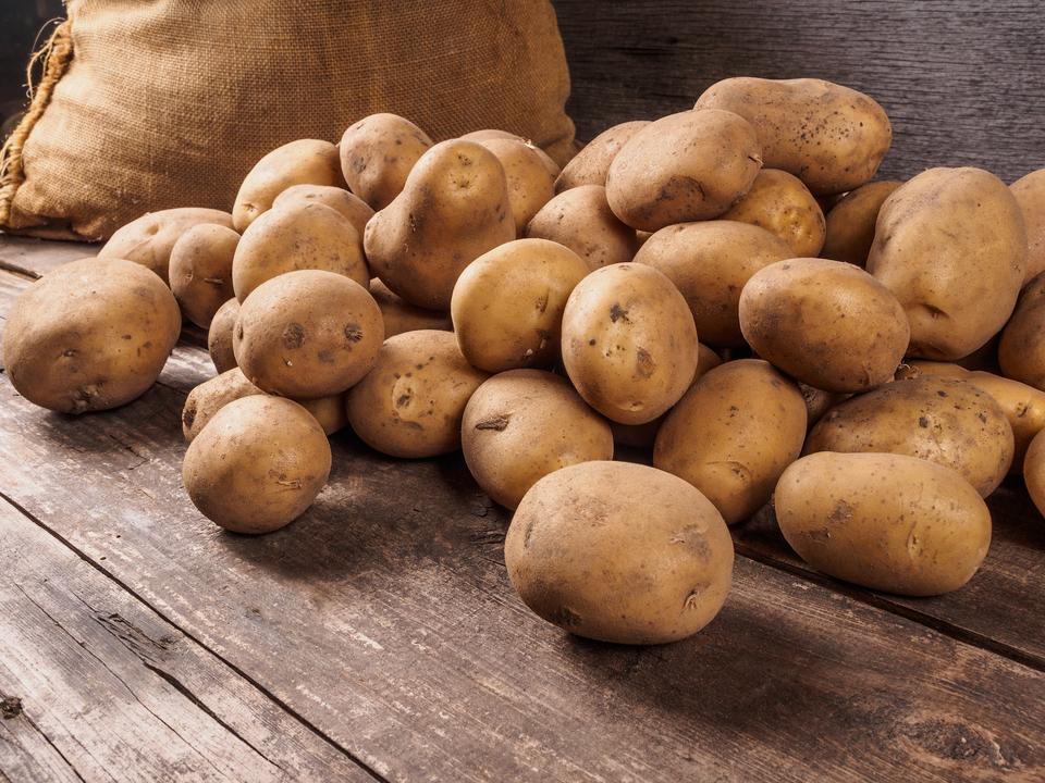 ジャガイモの遺伝子が半分になるかも