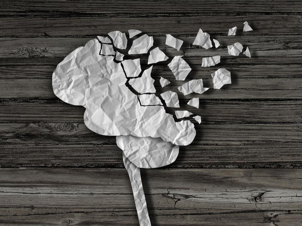 専門家に聞いてみた。なぜ私たちは記憶を「忘れる」の?