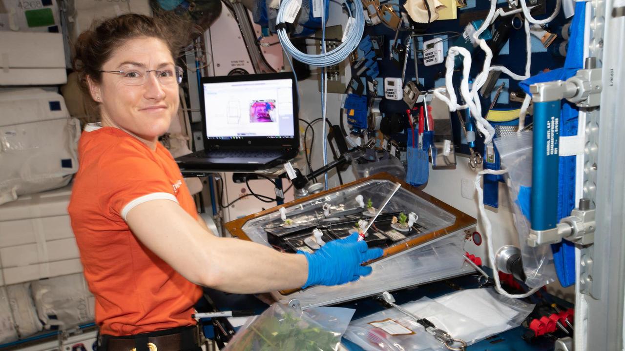 NASAの宇宙飛行士、女性で最長記録の328日間宇宙滞在へ:「夢が叶いました」