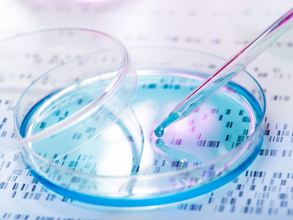 遺伝子を検査をしたら、生物学的父親が両親の不妊治療医だった