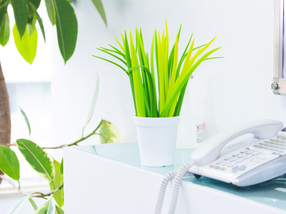 オフィスに緑を。草不可避のボールペン