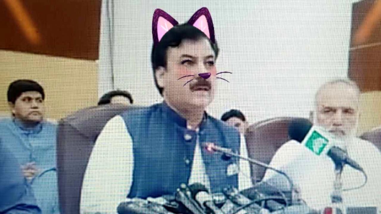 パキスタンの大臣、猫になる