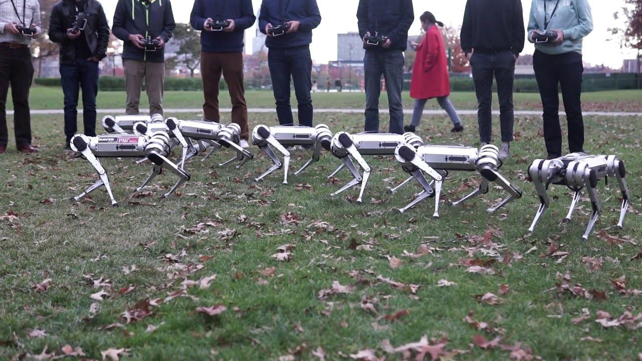 9体の四脚歩行ロボ「Mini Cheetah」が一斉テストでサッカーや同時バク宙を披露