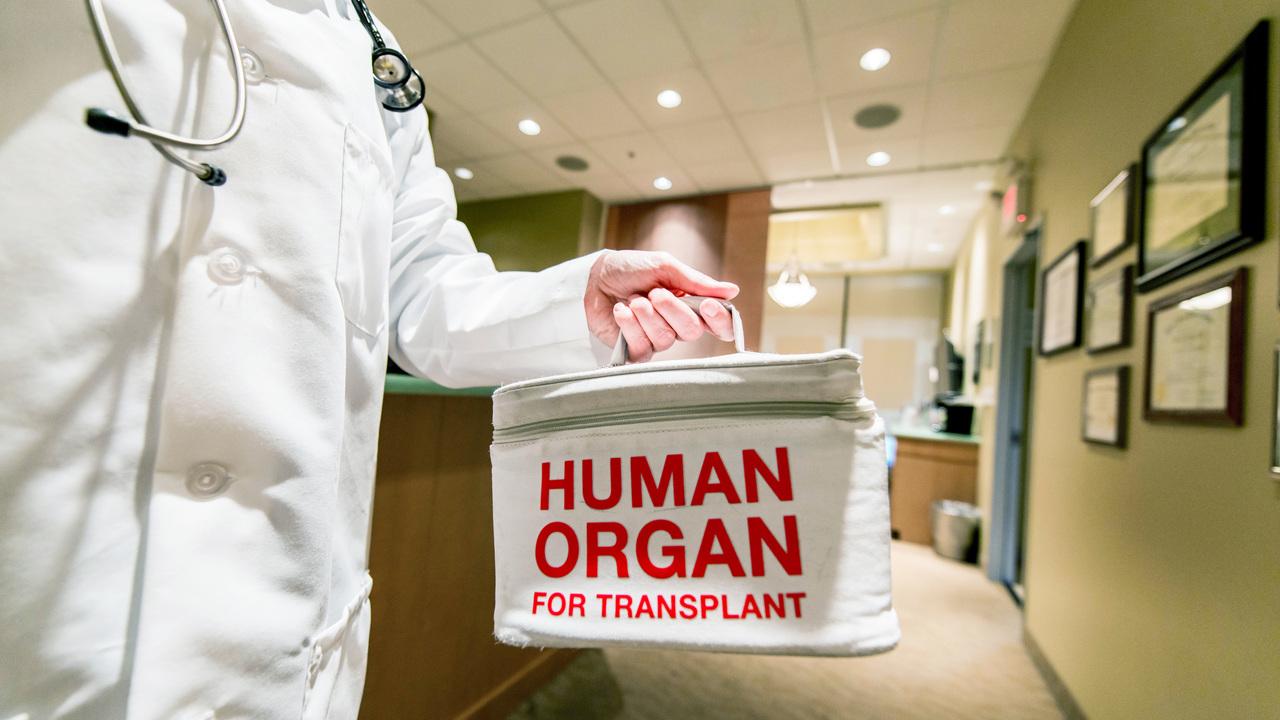 中国は臓器提供データを偽造していた?規則性の高すぎるデータから研究者が推測