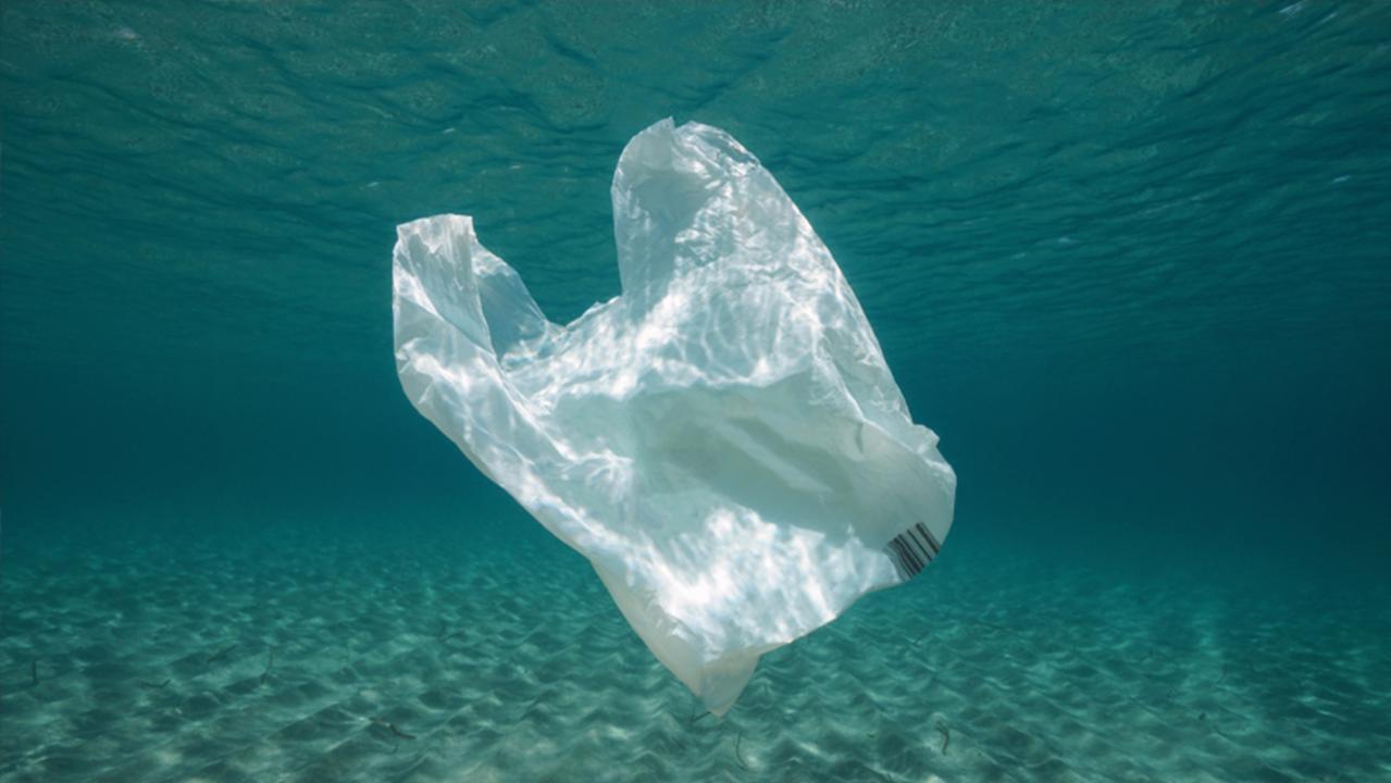 レジ袋よ、母なる海に還るのだ! テクノロジーはきっと海を救う…よね?