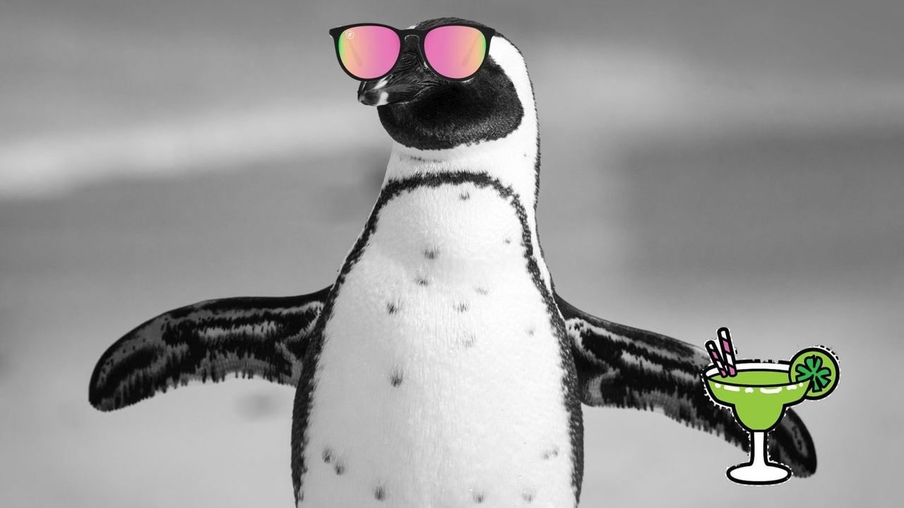 南極がなんか快適なんですけど…。20度なんですけど!