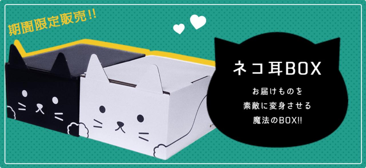 ヤマト運輸の猫ダンボールが可愛すぎて荷物送れなさそう