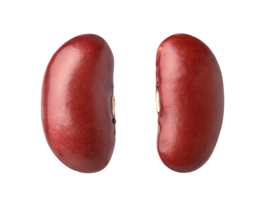 Galaxy Buds Live、サムスンも「豆」って呼んでた…