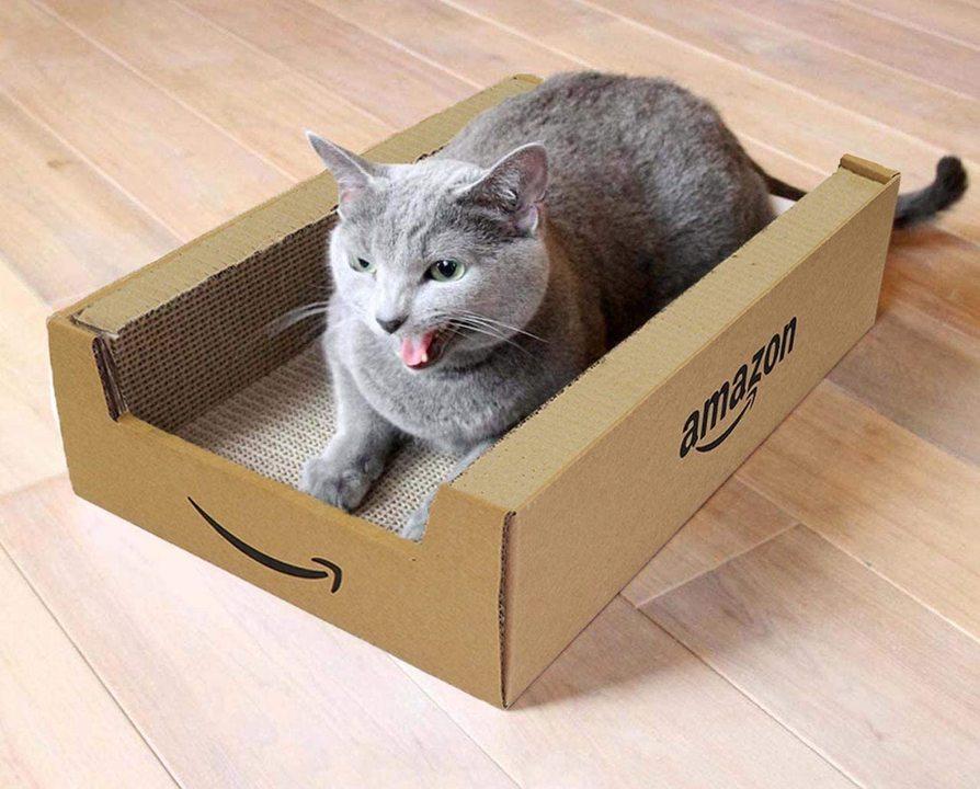 にゃんと、Amazon箱の猫用つめみがきが登場だニャー
