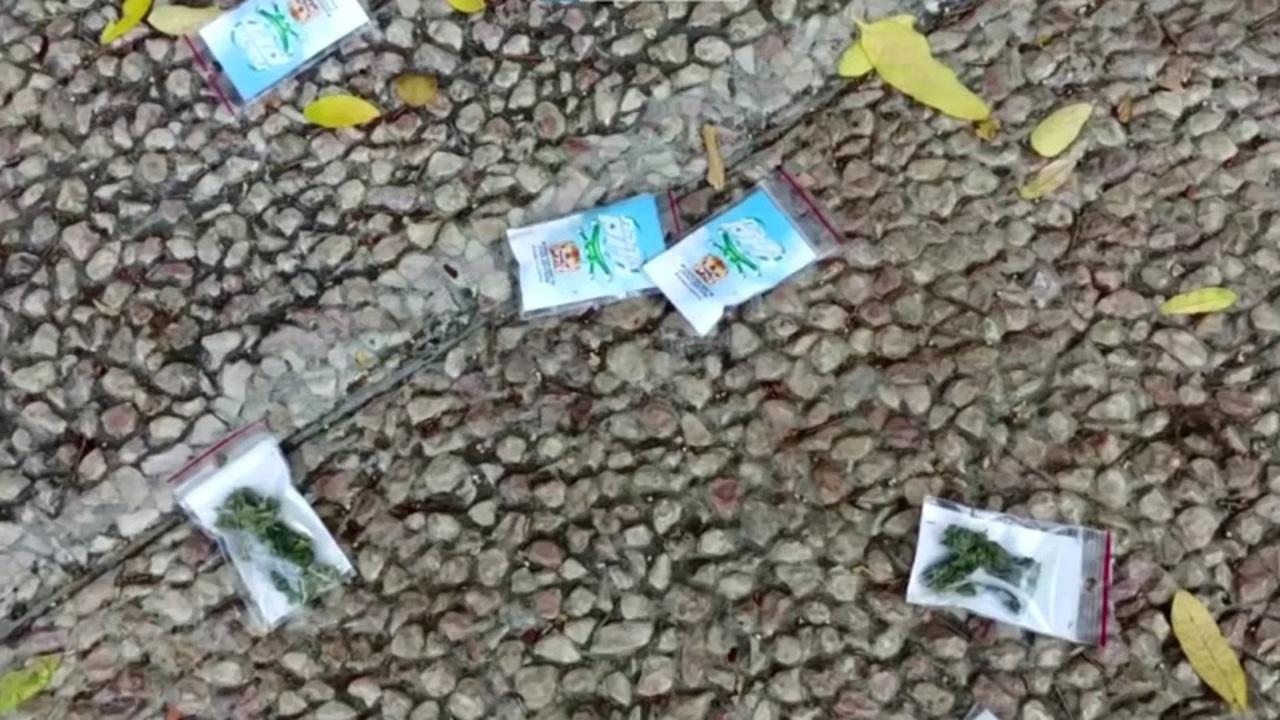 イスラエルでマリファナが降ってくる珍事件発生