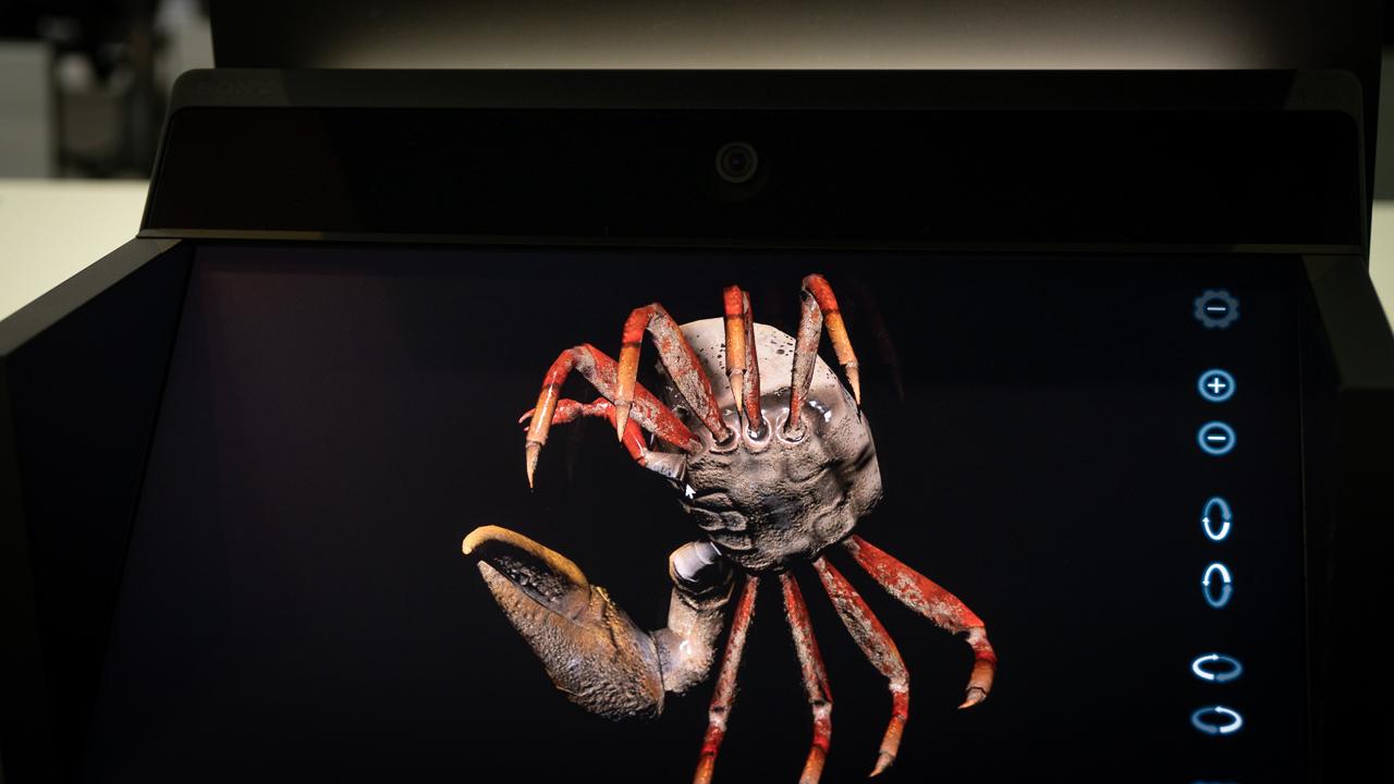 ソニーが発表した「空間再現ディスプレイ」からは3Dコンテンツと夢が飛び出てくるんですよ!