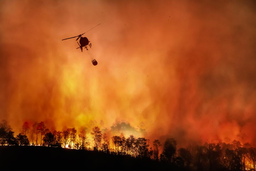 カリフォルニアの山火事、現代史に残る最初の「ギガファイア」に