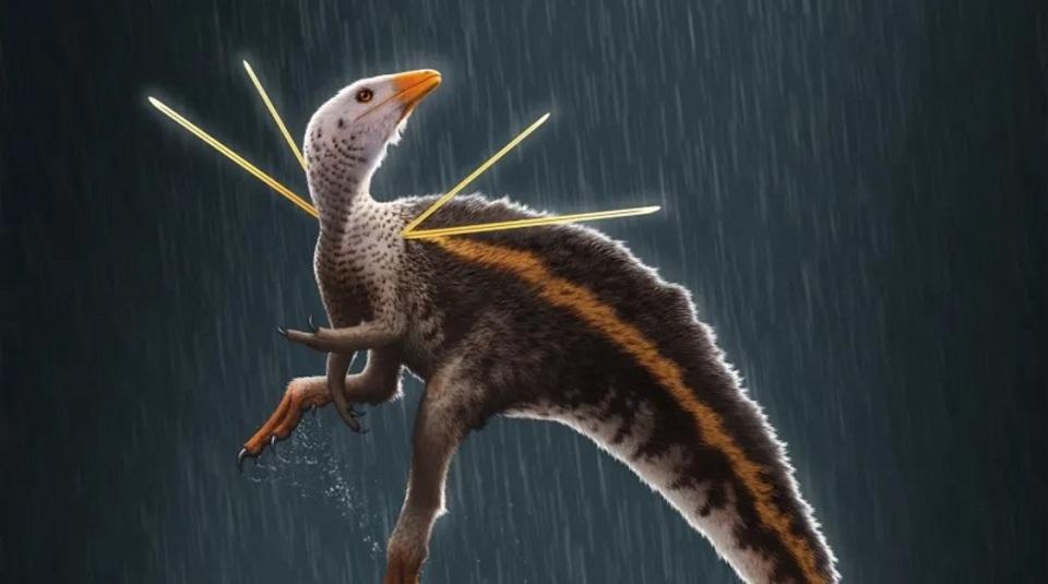 1億1000年前のブラジルにはこんなオシャレな恐竜がいたらしい