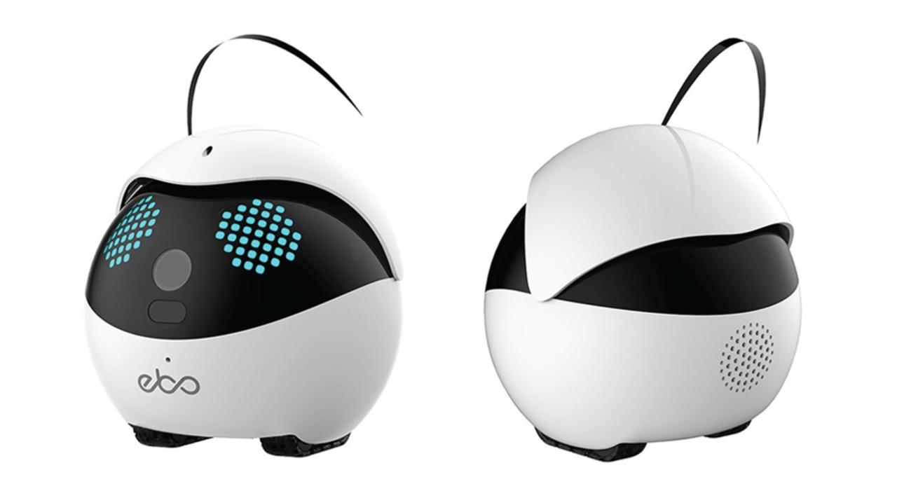 おうちのわんわん、にゃんにゃんをセイ!チーズ! ペット用のスマートロボット「Ebo」爆誕