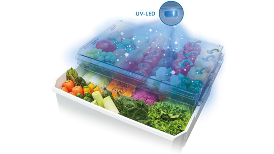 ビタミンCも増加しちゃうって? 買いだめ派にも安心の「野菜が10日間持つ冷蔵庫」