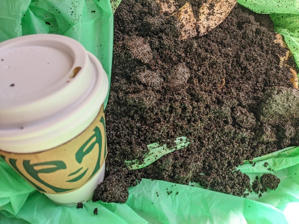 """カフェでもらった""""コーヒーかす""""でガーデニングのためのいい土をつくろう!"""