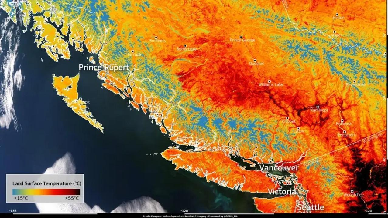 最高気温記録を更新した太平洋岸北西部、地表面温度が63℃に到達