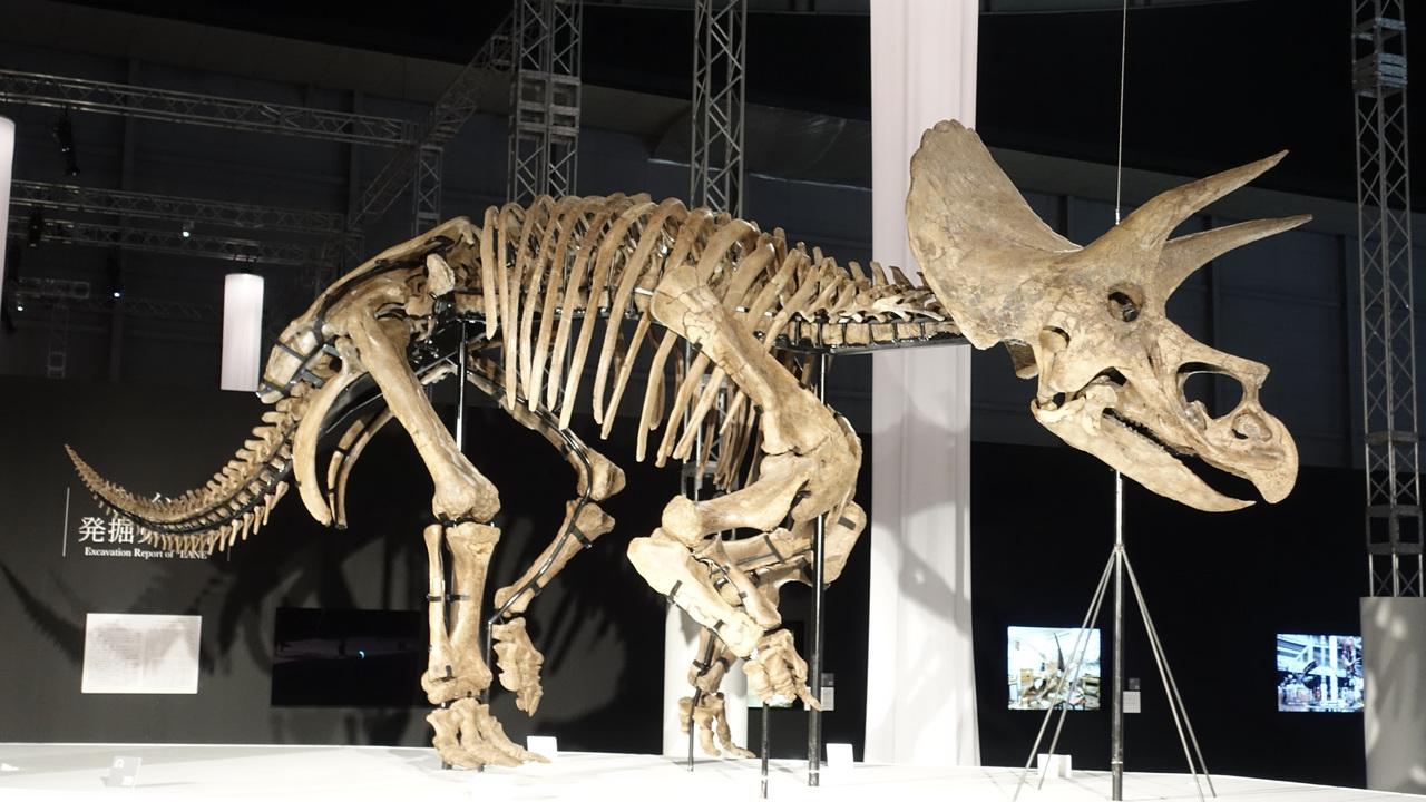 ソニーが本気出して恐竜科学博やったら、私が白亜紀にタイムスリップした
