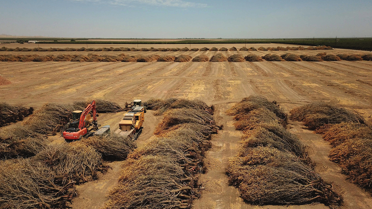 カリフォルニアの農家はいま、前例のない水の使用制限に直面している