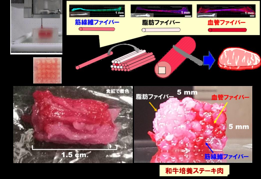 ステーキ肉は印刷する時代へ! 大阪大学が和牛のサシまで3D印刷を可能にする