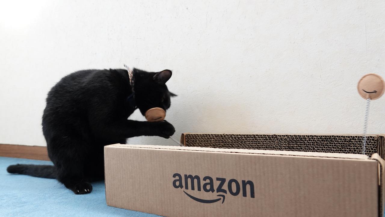 アマゾンが梱包用の段ボール減らすって
