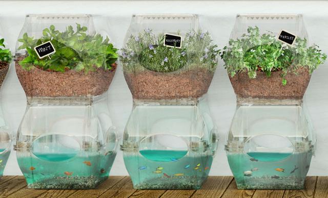 まるで未来都市な水槽&水耕栽培キットがエコシステムすぎる