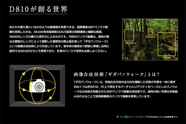 140722D810yakushima06.jpg