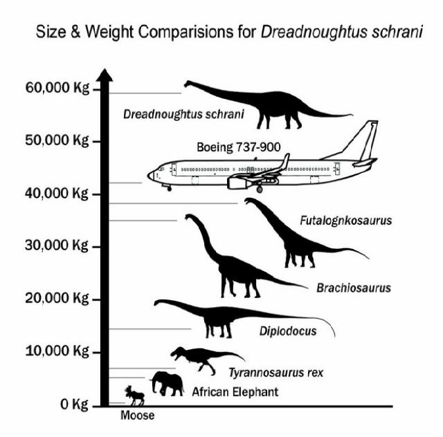 140901_Dreadnoughtus2.png