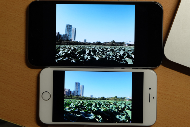 140929iphone6camera002.jpg