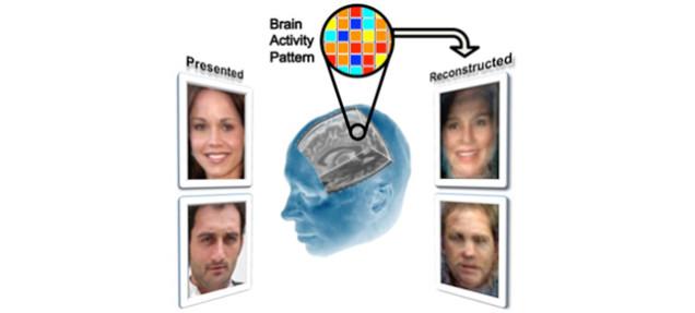 あなたが思い描いている人の顔、脳スキャンで読み取れちゃいます!
