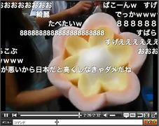 かわいくて食べられない! 綿菓子をつくるすごい職人技(動画)