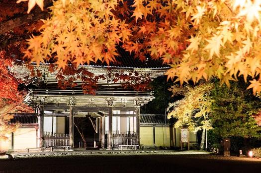 20151119_kyoto02.jpg