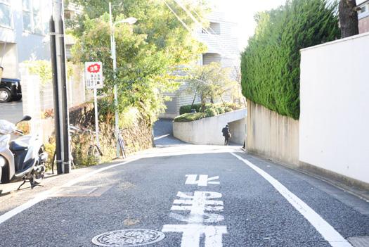 170125papuriko_2.jpg