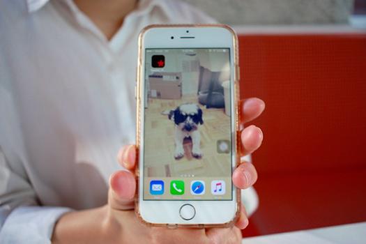20170219_smartphone04.jpg