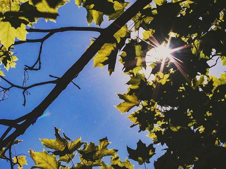 ふとさみしくなる秋は、自分の本質に気づける季節 #東京ときどき心理学