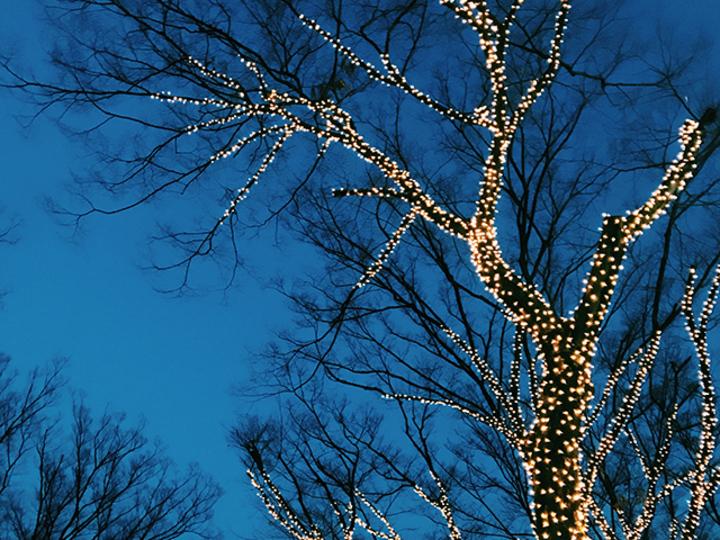 昔、クリスマスや誕生日などのイベントがあるたびに彼氏と喧嘩をしたな。UNTITLED BY KIKUNO