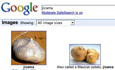 081231google-img-search.jpg