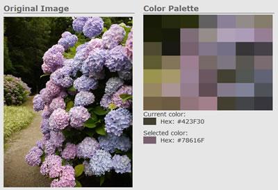 100707_colorapp14.jpg